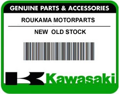 Kawasaki x O-Ring 10MM